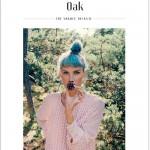 Nieuw tijdschrift: Oak – The Nordic Journal