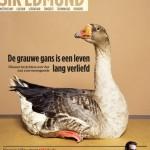 Volkskrant komt met nieuw 'zaterdagmagazine'
